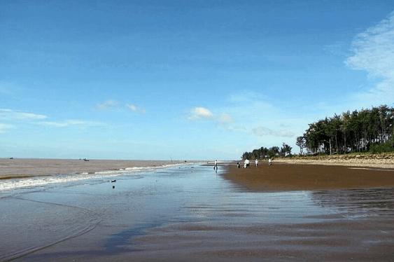 Xanh trời, xanh nước, xanh cả rừng cây - những sắc xanh của biển Ba Động