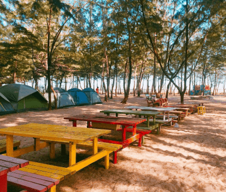 Địa điểm cắm trại được giới trẻ yêu thích (ảnh ST)