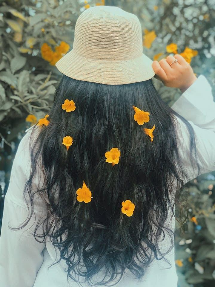 hoa huỳnh liên