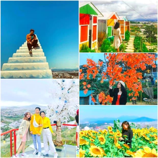 Sunny Farm - Thiên đường sống ảo của giới trẻ khi đi du lịch Đà Lạt.
